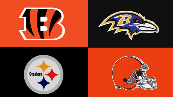 The Good, The Bad and The Ugly: AFC North