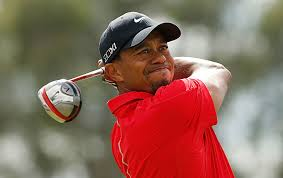8 Top Fantasy Golf Players