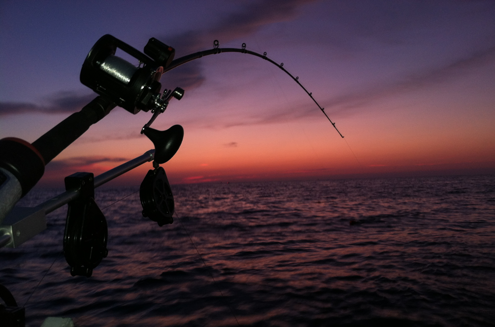 The Benefits that Come With Night Fishing