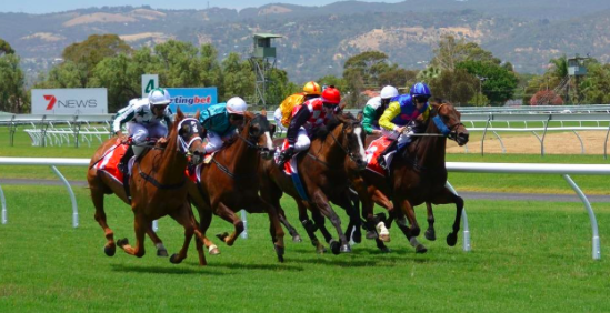 How to Enjoy Free Bets in New Zealand