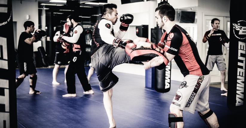 Hai Nguyen of Elite-MMA Explains the Progression of the Sport