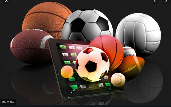 Tips on How You Can Make Sports Betting Profitable for You