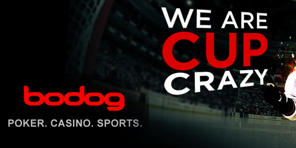 Best Options for betting on hockey leagues